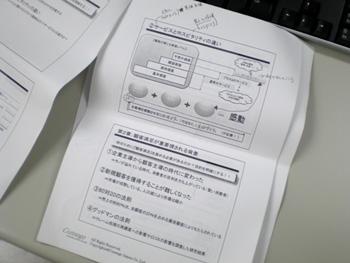 20081111_iori.jpg