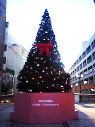 20081208_pepe02.jpg